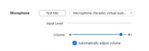 Zoom microphone settings